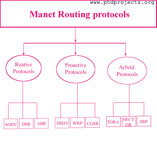 routed vs routing protocols essay